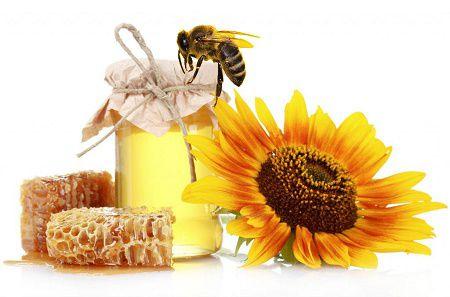 Trị nám da bằng sữa ong chúa