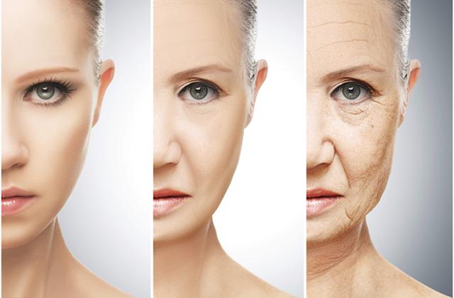 Loại thuốc đầu tiên kéo dài tuổi thọ sẽ được thử nghiệm