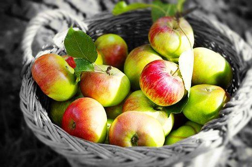 15 thực phẩm giàu chất xơ nhất giúp giảm cân nhanh (P.1)