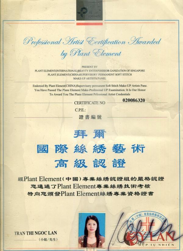 Chứng nhận giải thưởng nghệ sĩ chuyên nghiệp của Singapore