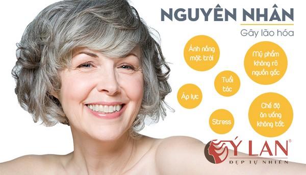 lão hóa da và cách phòng chống - 2